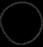 Waterway Executive Pump Body O-ring Model ww805-0261
