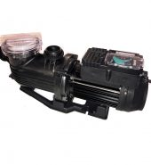 Pentair Pantera Evo 2 speed ECO pool pump Model PPP9502SP