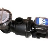 Enduro Gemini Twin Eco Pump 1 hp Model 11030020
